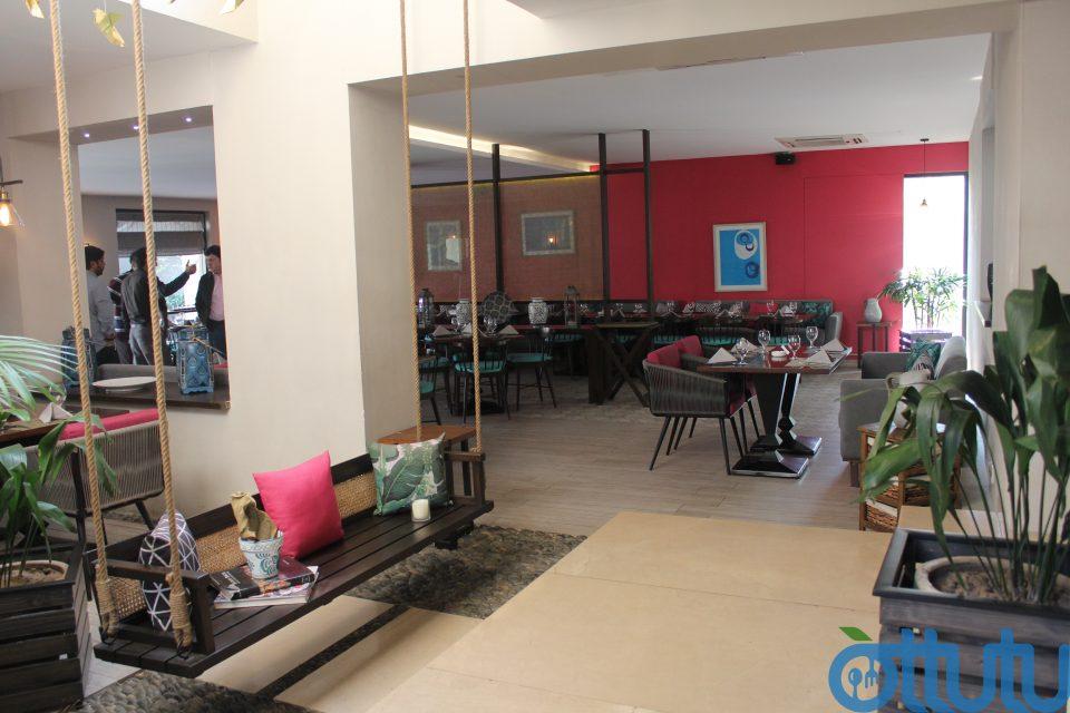 Fuchsia Kitchen Indoor